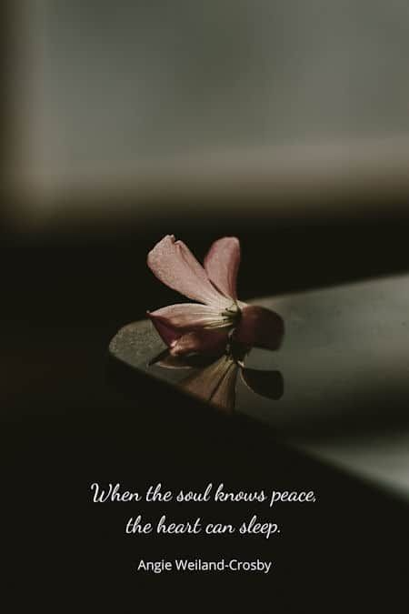 Humanity Quotes Nature Peace Quotes For The Soul Peace Quotes Inner Peace Quotes Nature Quotes