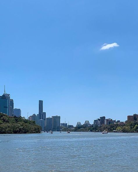Beautiful day for a walk in Brisbane. So many people and dogs walking along the river.  Got to get out and make the most of life then come home and crash on the sofa.  #brisbaneanyday