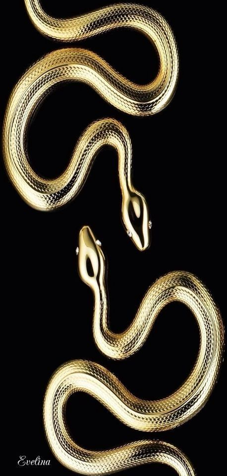 Golden snakes | Black and Gold moodboard in 2019 | Gold