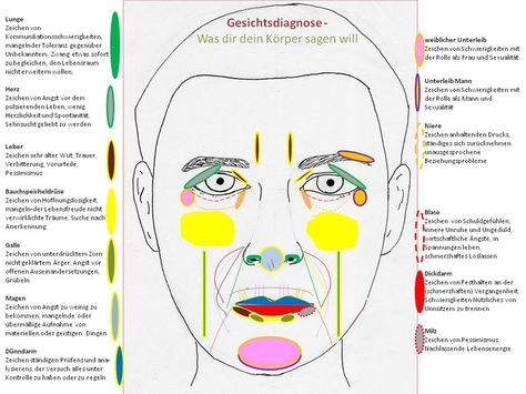 physiognomie definition