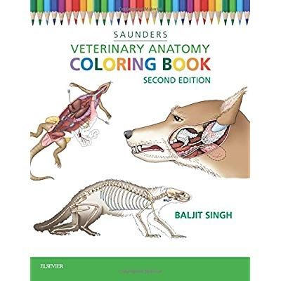 - 77 Veterinary Anatomy Coloring Book Pdf Free Download HD