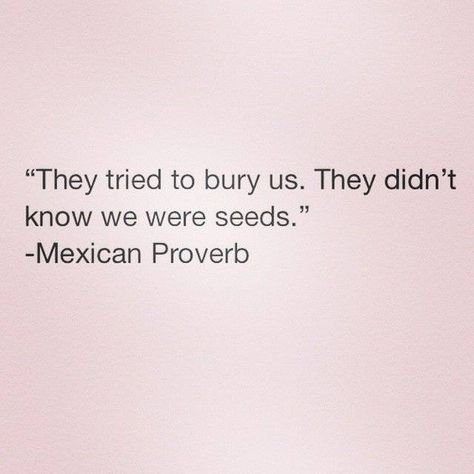 Mexican proverb [Image]