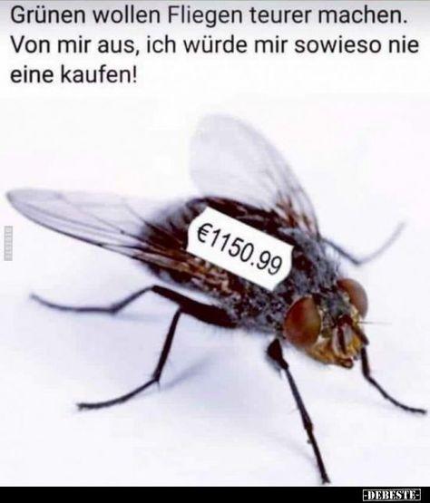 Grüne wollen Fliegen teurer machen .. -  Grüne wollen Fliegen teurer machen ..  - #EpicTexts #fliegen #FunnyFridayMemes #FunnyMemes #FunnyPictures #grune #machen #teurer #wollen