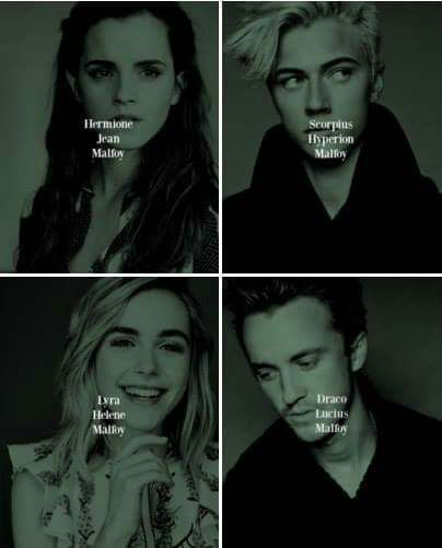 Hermione, Ginny, Harry, Ron, and Draco have returned to