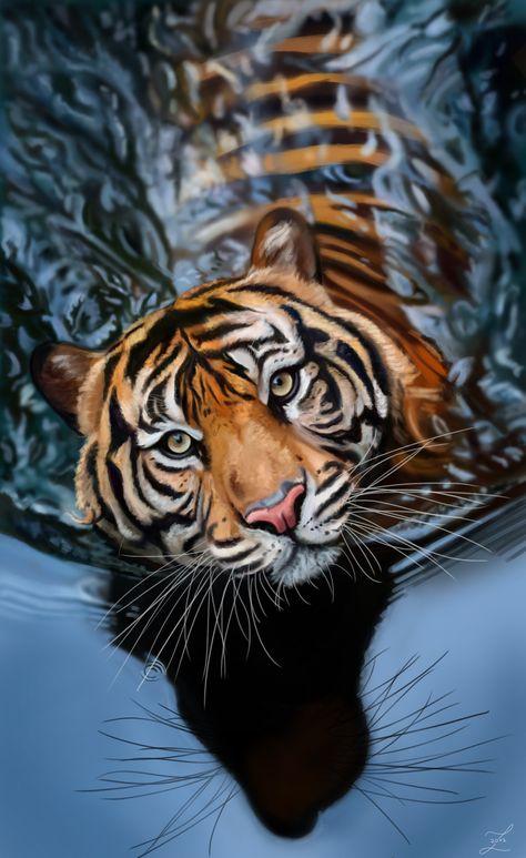 die 20 besten bilder zu tiger und co in 2020  tiere