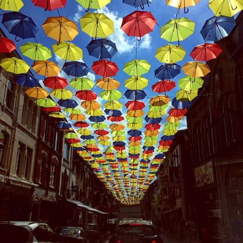 When The Sun Shines We Shine Together Beautiful Town Bastogne Beautifulbastogne Bastogne Umbrella Umbrellai Instagram Instagram Photo Photo And Video