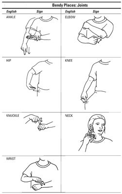 asl body parts 2 - Best Pinner Sign Language Chart, Sign Language For Kids, Sign Language Phrases, Sign Language Alphabet, Learn Sign Language, American Sign Language, Second Language, French Language, Body Language