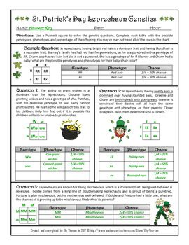 Monohybrid Crosses Worksheet - worksheet