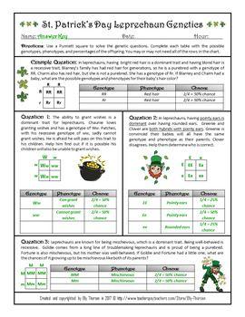 Monohybrid Crosses Worksheet - worksheet