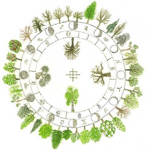 Celtic Tree Horoscope-  ~By Annie B. Bond.  https://www.facebook.com/photo.php?fbid=286378121470637=a.273870869388029.55848.273867192721730=1=nf