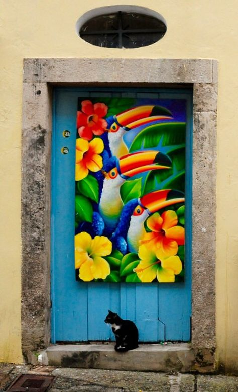 Salvador, Bahia, Brazil - the painting and door (and cat)