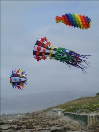 Line Art Laundry Jim S Kites With Images Line Art Art Kite