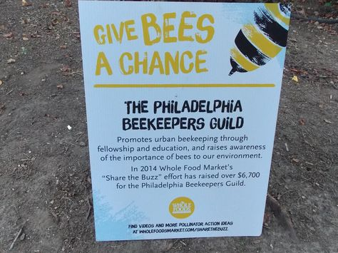 Give bees a chance, Philly!