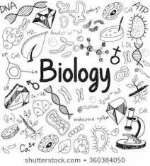 cover iphone biologi