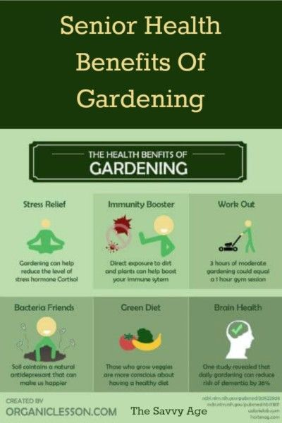 1c6bae7a0eb81fee94a07a5aac3fd84d - Benefits Of Gardening For The Elderly