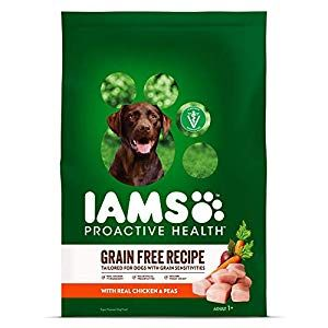 Pin On Dog Supplies Online