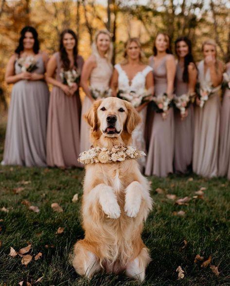 Bring your little boy on your big day #wedding#weddinginvitations#weddingideas#stylishwedd#stylishweddinvitations#vellumweddinginvitations