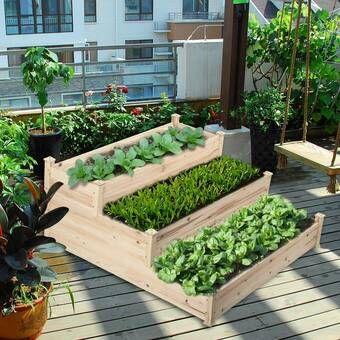 Jeffrey Vegetable Garden 3 Tier 4 Ft X 4 Ft Cedar Wood Vertical Garden In 2020 Raised Garden Raised Garden Beds Vegetable Garden Raised Beds