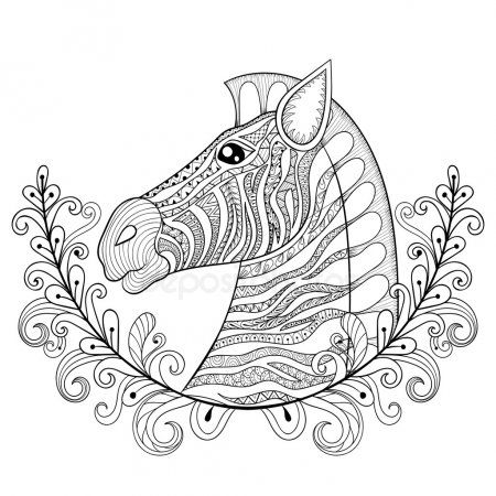 Zebra In Floral Frame Vector Zentangle Zebra Head Illustration