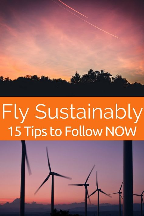 How YOU Can Offset Air Travel & Fly Sustainably