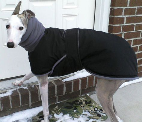 Raincoat | Whippet, Raincoat and Tutorials