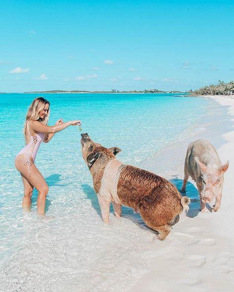 Gaby Rguez BahamasPhotographer (@bahamasphotographer) • Instagram photos and videos