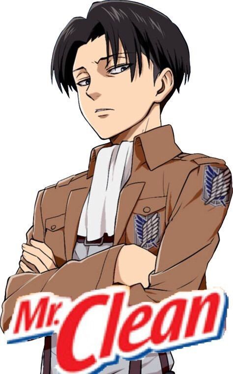 Levi x Reader Oneshots Book 1 - When Levi Goes Shopping For Cleaning
