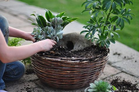How to make an easter garden christian easter activity easter how to make an easter garden christian easter activity easter garden easter and christian easter negle Image collections