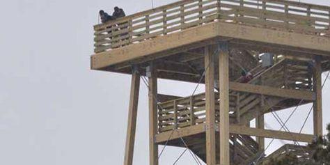 Broughton Sheboygan Marsh Park Tower And Wildlife Area W7039