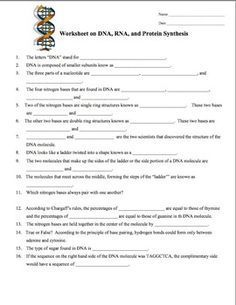 DNA, RNA, Protein Synthesis Worksheet / Study Guide | Dna