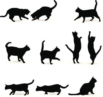 Cat Silhouette Katzen Silhouette Katzen Kunst Katzen