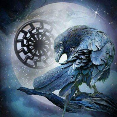 Raven, Crow, et Corbacs  1cad05533346b6fceb78dbaaf04cb46b--viking-pictures-damon-salvatore