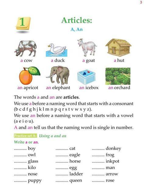 2nd Grade Grammar Articles