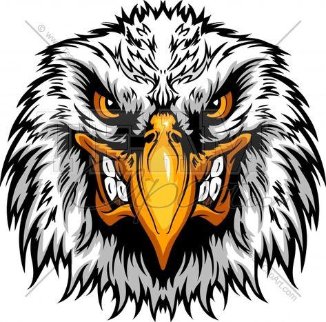Eagle angry. Pinterest
