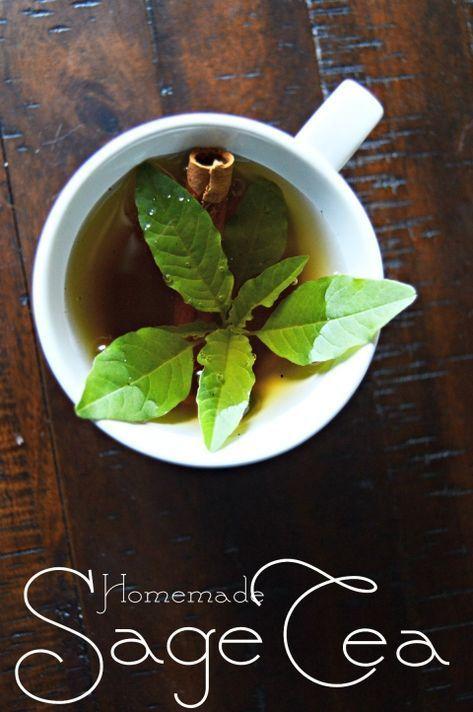 How to Make Sage Tea | Delicious Tea Recipes | Sage recipes, Lemon