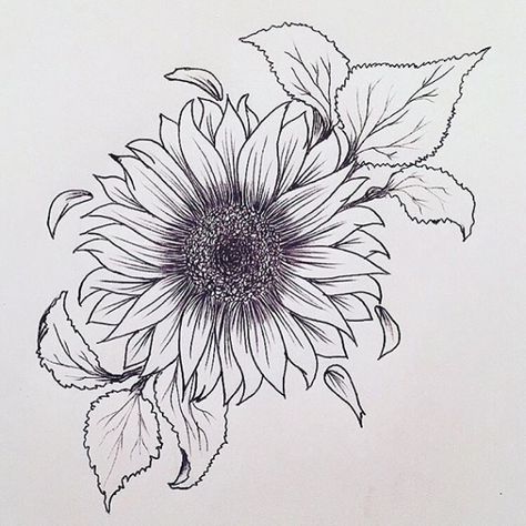 Please check more!! Awesome Ten Reasons Why You Shouldn't Go To Sunflower Tattoo Drawing On Your Own | sunflower tattoo drawing