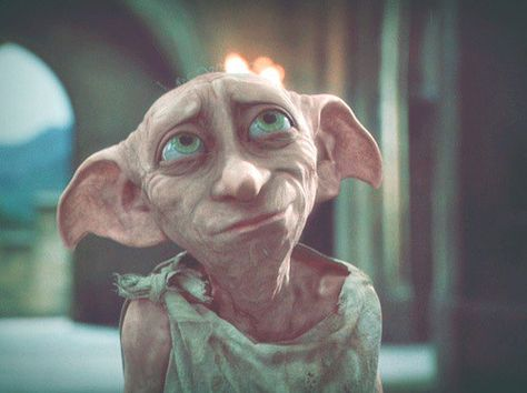 I got Dobby! Which Harry Potter Character Are You Based On These Really Hard Questions? While you may not that formidable, you're incredibly tough, loyal and would do anything for the people you care about. You're not necessarily a born leader, but when you have to take charge, you can – and when you do, your quick thinking is invaluable.