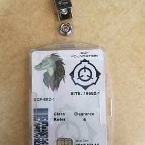 Scp Foundation Departmental Id Card Badge Customized With Etsy Scp Foundation This Or That Questions