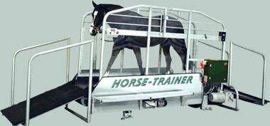tapis roulant cheval materiel equitation