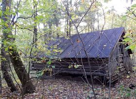 Those Who Wander Corbin Cabin And Nicholson Hollow National Parks Cabin Camping Spots