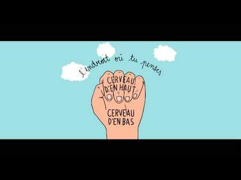 ▶ Le cerveau dans la main, une animation pour aider les enfants à gérer leurs émotions - YouTube