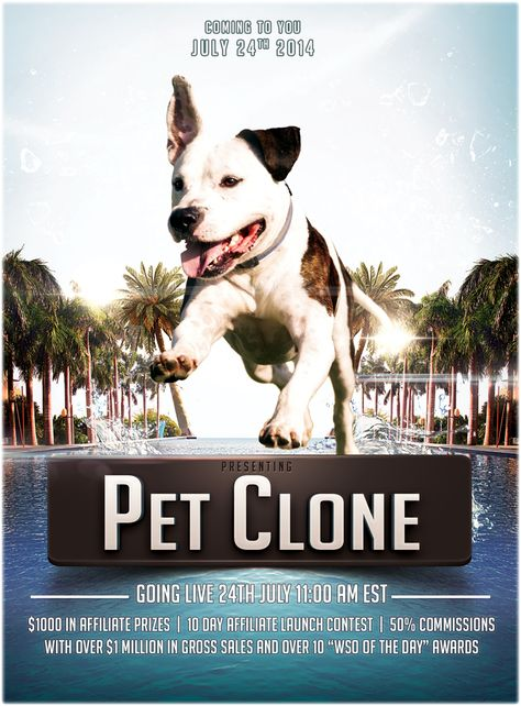 Petclone An Amazon Pet Store Internet Marketing Online Marketing Marketing