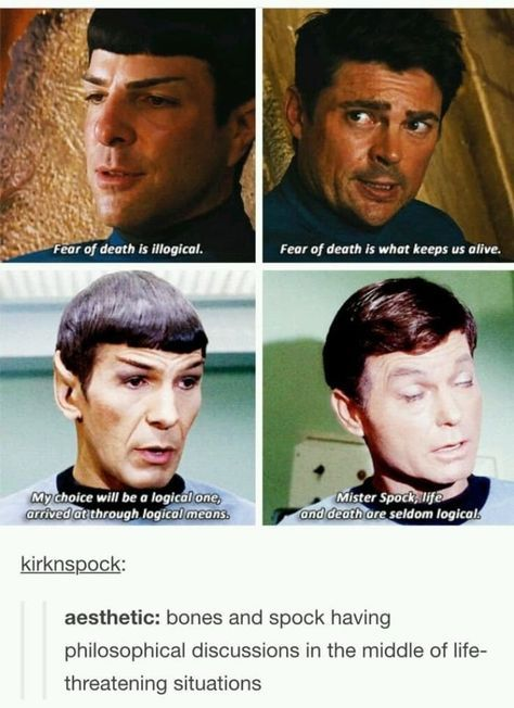 Fun for the day! Spock and Bones Star Trek aesthetic ; Star Trek Humor, Funny Star Trek, Star Trek Quotes, Star Wars, Star Trek Tos, Star Trek Voyager, Star Trek Spock, Vulcan Star Trek, Star Trek 2009