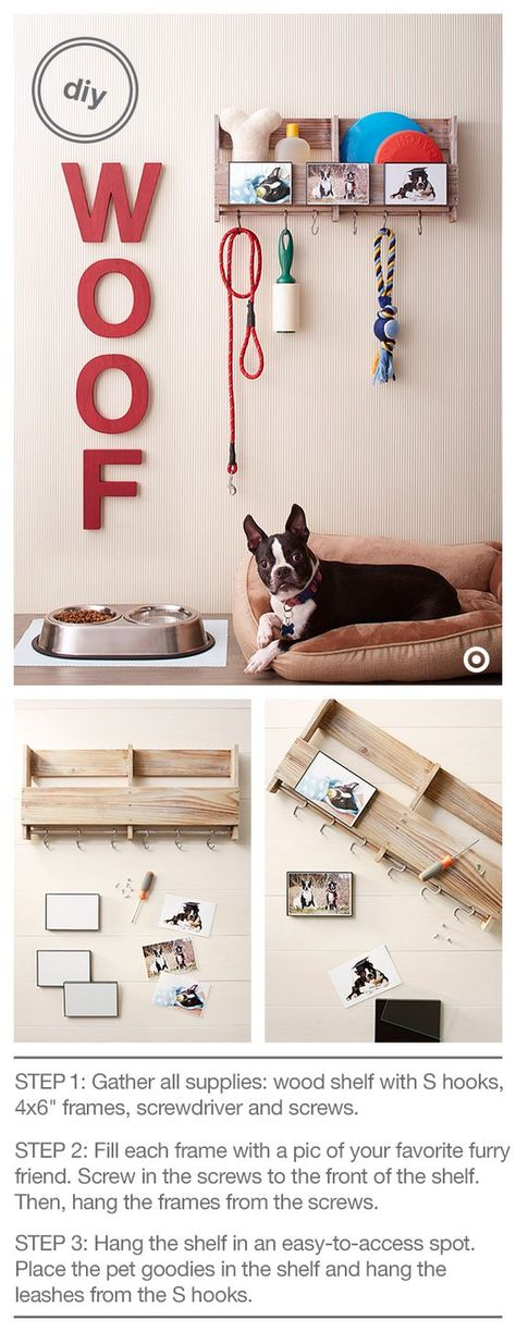 Declutter Your Dog with 9 Inspiring Ideas for Organizing Pet Supplies