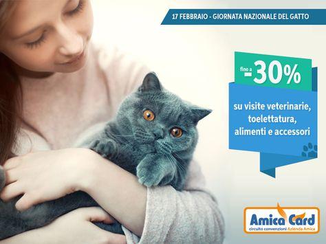 Attrezzatura toelettatura ~ Camice per toelettatura letizia negozio per animali