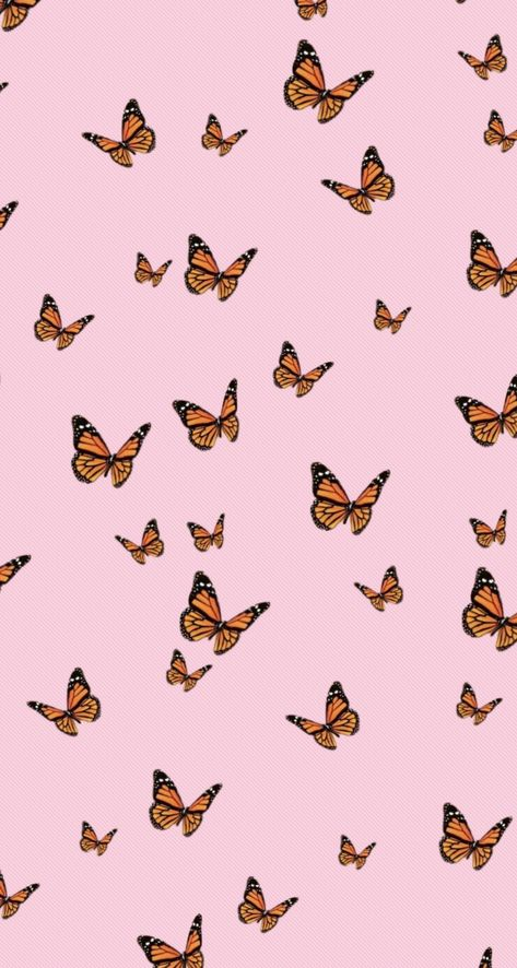 Butterfly pink wallpaper