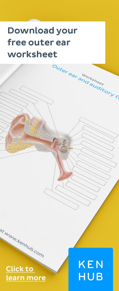 Blank ear diagrams and quizzes: The fastest way to learn ...