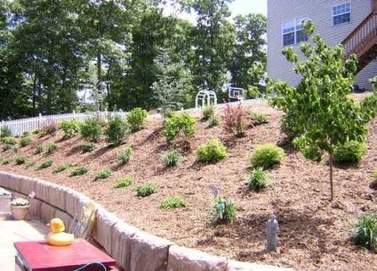 Landscaping Ideas For Hills Walkways 70 Ideas Hillside Landscaping Landscaping On A Hill Sloped Garden