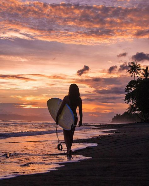 Room I'd rather end up being.💫 • • • • mokumsurfclub sunset browsing search surfergirl No place I'd rather get.💫 • • • • mokumsurfclub sunset browsing on surf surfergirl surftrip surftravel sky natureaddict goneoutdoors… Surfing Pictures, Beach Pictures, Summer Pictures, Kitesurfing, Surf Girls, Beach Aesthetic, Surf Trip, Foto Instagram, Burton Snowboards