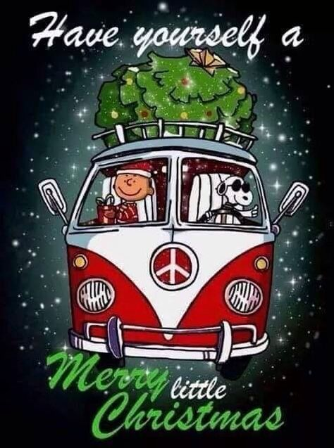 Charlie Brown & Snoopy - Have Yourself A Merry Little Christmas Snoopy Love, Snoopy E Woodstock, Charlie Brown And Snoopy, Charlie Brown Christmas Quotes, Peanuts Christmas, Merry Little Christmas, Christmas Greetings, Xmas, Christmas Christmas